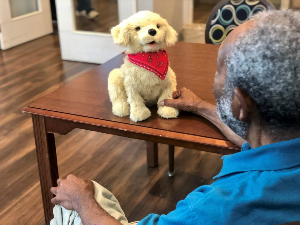 Residents enjoy interacting with robotic companion pets and therapy animals at Autumn Village
